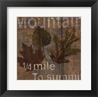 Framed Lodge IV