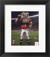 Framed Univserity of Georgia Bulldogs Mascot 2007