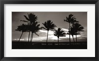 Framed Sunrise Palms