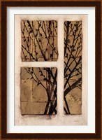 Framed Monochrome Blossom
