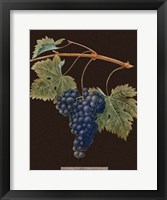Framed Purple Grapes