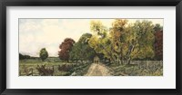 Framed Country Road