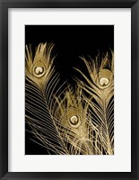 Framed Plumes D'or I