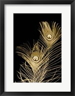 Framed Plumes D'or II