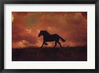 Framed Forgotten Horse