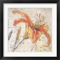 Framed Sorbet Lily I