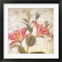 Framed Sorbet Lily II