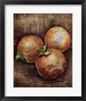 Framed Seraser Fruit IV