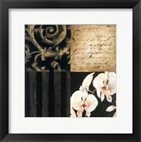 Framed Orchid Sketch II