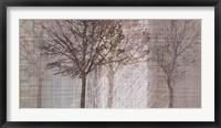 Framed Before Winter