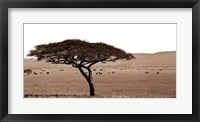 Framed Serengeti Horizons I