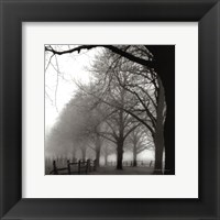 Framed Black and White Morning
