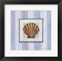 Sanibel Shell I Framed Print