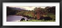 Framed Haleakala Rim