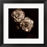 Framed Circus Roses