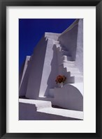 Framed White Steps with Geraniums