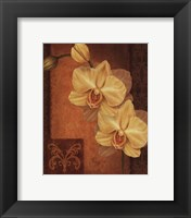 Framed Golden Orchid II