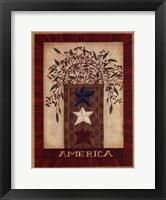 Framed America