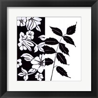 Black And White III Framed Print