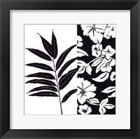 Black And White IV Framed Print