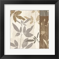 Framed Flowers & Ferns II