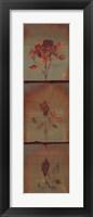 Framed Three Roses