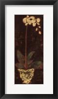 Framed Gilded Orchid I