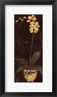 Framed Gilded Orchid II