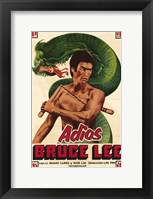 Framed Adios Bruce Lee