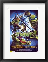 Framed Teenage Mutant Ninja Turtles DVD