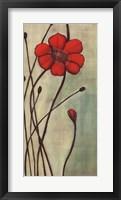 Eclat Rouge Framed Print