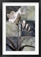 Framed Memento I