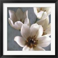 Framed Lily Parfait II