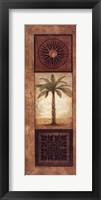 Framed Sago Palm