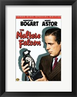 Framed Maltese Falcon DVD