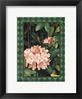 Framed Rhododendrum I