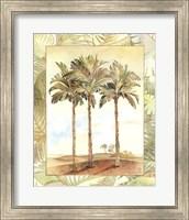 Framed Palm Tree IV