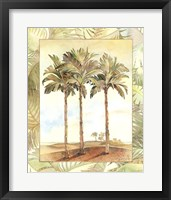 Framed Palm Tree IV