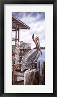 Framed Pelican Key