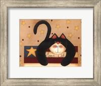 Framed Ameri-Cat