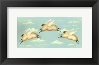 Framed Counting Sheep