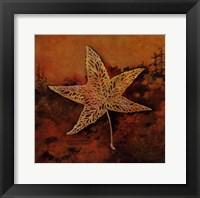 Framed Catch a Star