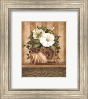 Framed Petunia and Shell