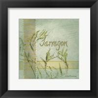 Framed Tarragon
