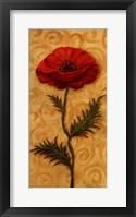 Framed Red Poppy