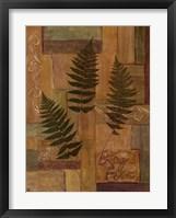 Framed Log Fern