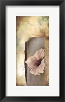 Framed Hibiscus in White II