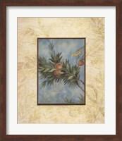Framed Giardino I