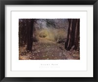 Framed Silent Path