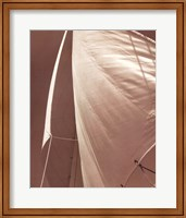 Framed Sail Away III